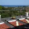 Villa-Namaste-Roof-Terrace-3